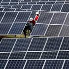 Енергийната криза: Ще стане ли мафията зелена?