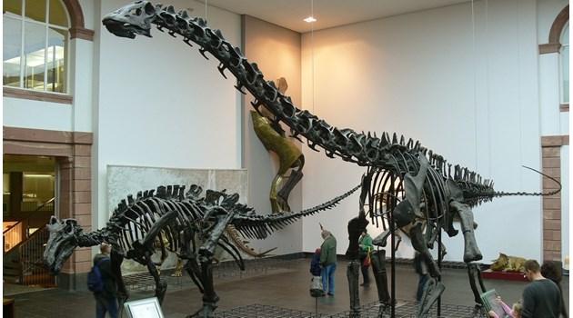Как по света печелят от динозаврите?