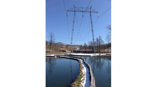 От Нова година токът поскъпва пак, държави плащат част от сметките. В България вдигат енергийни помощи