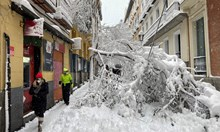 Лудо време! В Мадрид повече сняг от Осло. В Атина отидоха на плаж. България потопена насред зима