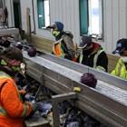 Изплатени са компенсации за общо 157 862 работници и служители.