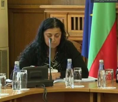 Вдовицата на пилота Димитрина Попова. Кадър и видео Нова тв
