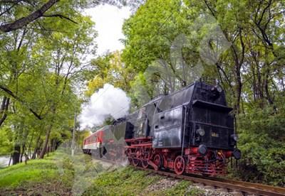 Парният локомотив Баба Меца СНИМКА: 24 часа