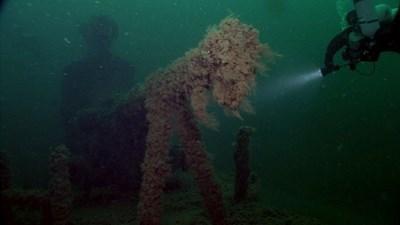 Български водолази обследват  100-милиметровото оръдие и корпуса на съветската подводница Л-24, намерила гибелта си в наши води през 1942 г. При това спускане за първи път бе отворен и люкът на подводната лодка.
