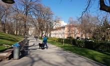 Агресивен лабрадор нападна жената  на Милен Велчев, стопаните му ругаят