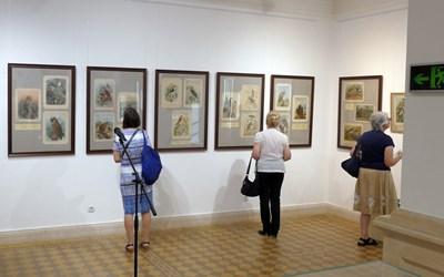 """Изложбата """"Птиците в изкуството и цар Фердинанд I"""" предизвика голям интерес. СНИМКИ: ПИЕР ПЕТРОВ"""