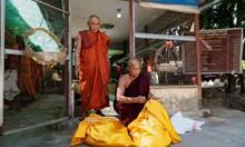 Убежище за змии в будистки манастир