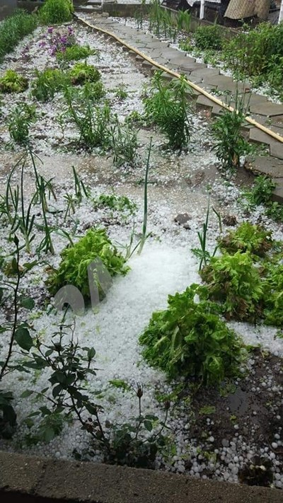 Снежна покривка се образува в Каравелово. СНИМКИ: Авторката СНИМКА: 24 часа