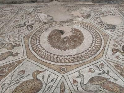 Сцената с пауна, разперил опашка, посреща на централния вход на базиликата.