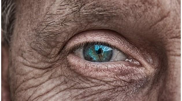 Немски учени откриха протеин, който ни кара да остаряваме по-бързо