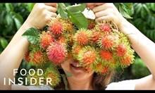 Екзотични плодове от цял свят