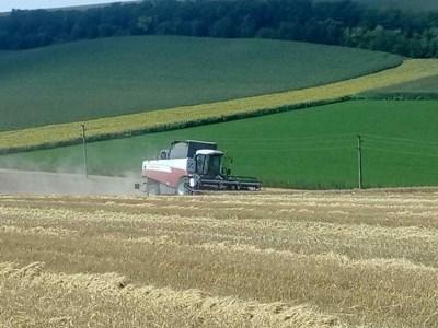 Преди да изчислят данъка, който дължат фермерите имат право да приспаднат разходи за дейността си.