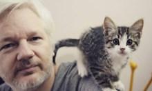 Джулиан Асанж: Злoдей или кибермесия? Още като тийнейджър е арестуван за кражба на 500 хил. долара от сметките на Ситибанк