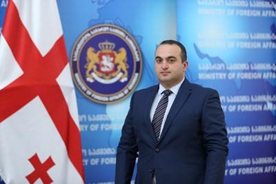 Лаша Дарсалия е заместник министър на външните работи на Грузия от 2018 г. Преди това е бил началник на отдел в грузинската разузнавателна служба (2016-2017) и директор на отдела за сигурност и анализи в Националния съвет за сигурност на Грузия (2009-2016). Завършил е международни отношения в университета на Есекс.