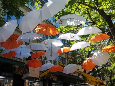 Цветни чадъри създават празнично настроение по пешеходната улица на Благоевград.