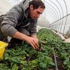 83 млади фермери подписаха договори по подмярката за стартова помощ
