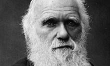 """Естественият подбор убива Чарлз Дарвин.  Хваща паразит от дървеници на кораба """"Бигъл"""", който води до сърдечен удар"""