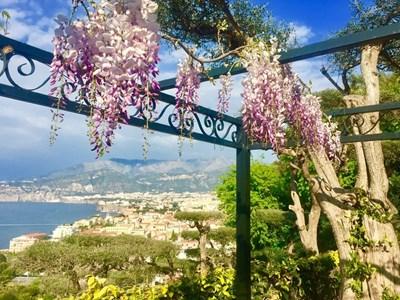 Цветя и богата растителност се стелят над градчето.