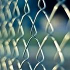 Чехия ще спре системния и щателен контрол по границите си с Германия и Австрия СНИМКА: Pixabay