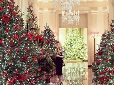 Мелания Тръмп с украсата в Белия дом СНИМКА: Инстаграм/flotus