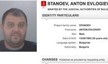 Докато полицаи от цял свят търсят чрез Интерпол Антон Бирмата, той брал кротко сливи в Брезово