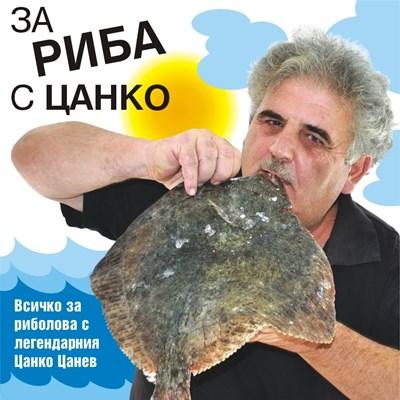 За риба с Цанко: Варненци се къпят в хамсия