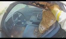 Гнездо на стършели в автомобил