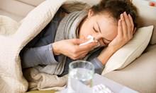 С грипа се справяме зле, както и Западна Европа