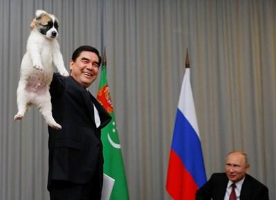 Президентът на Туркменистан Гурбангули Бердимухамедов подари на руския си колега Владимир Путин кученце средноазиатска овчарка за 65-ия му рожден ден СНИМКА: РОЙТЕРС