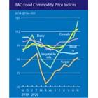 Световните цени на храните през ноември доближават 6-годишни върхове