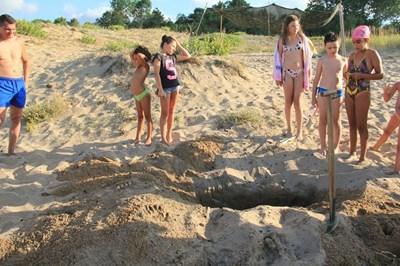 Туристи погребват умрял делфи на плажа Корал.