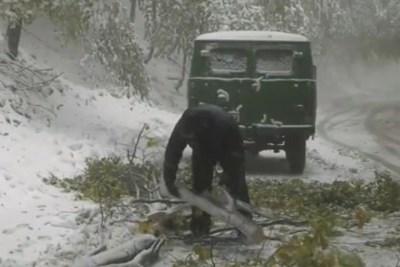 """Шофьори с летни гуми блокирани с часове от снега на прохода """"Петрохан"""" КАДРИ: Нова телевизия"""