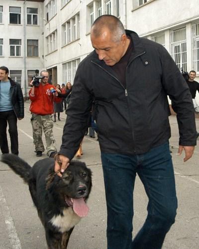 """През 2007 г. Борисов отиде да гласува в компанията на кучето си Борко. СНИМКИ: АРХИВ """"24 ЧАСА"""""""