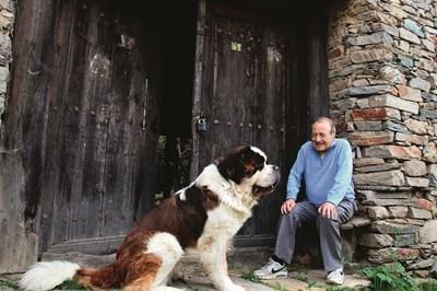 """Дончо е 5-годишният санбернар на Георги Данаилов. Любимата му народна песен пък е """"Калеш Дончо"""" (""""калеш"""" означава черноок, ваклоок). Май не случайно кучето носи това име"""