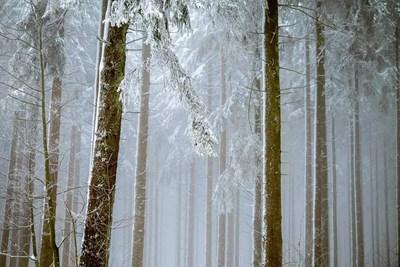 НИМХ: Първи сняг се очаква на 21 ноември