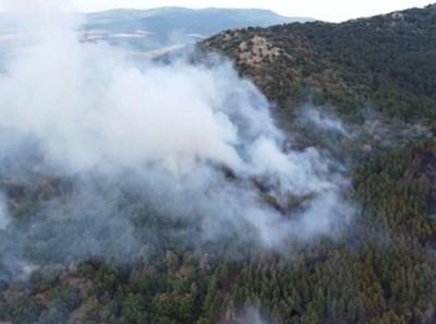 Пожарът в Сакар планина КАДЪР: bTV