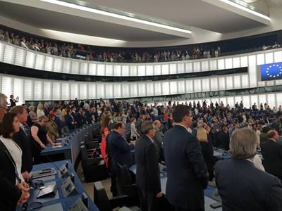 Евродепутатите на снимката в дъното вляво обърнаха гръб на Европа СНИМКА: Кристина Кръстева