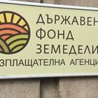От 21 януари зеленчукопроизводители и овощари заявяват кредити за семена и торове