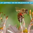 Остават 3 дни! Подаряват се 100 000 медоносни дръвчета в подкрепа на пчелите!