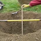 Изкопават се ямкиза новите дръвчета