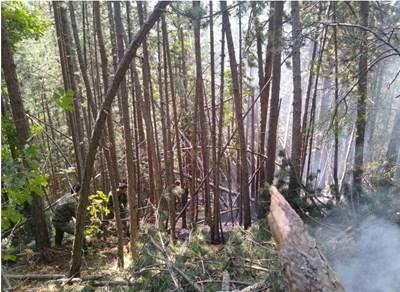 Военнослужещите изпълняват своите задачи над село Югово в трудно достъпна планинско-гориста местност, при високи температури, голяма надморска височина и сложна обстановка. Снимка: МО