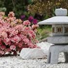 Камъкът в японската градина
