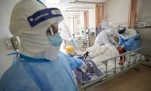 Конспирации за коронавируса: биооръжие, опити с прилепи