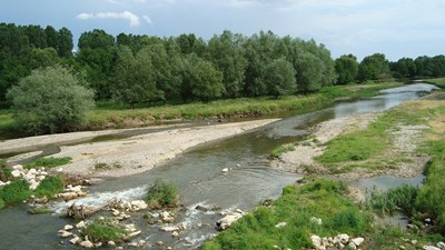 Коритото на река Стряма край Ръжево Конаре има 4 язви.