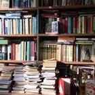 Снимката на библиотеката на Георги Господинов
