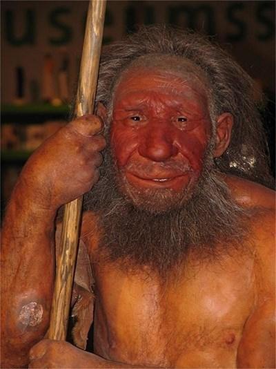 Възстановка на неандерталец СНИМКА: Уикипедия