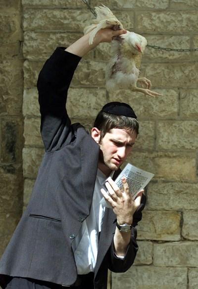 Млад евреин чете специална молитва с жертвена кокошка.
