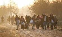 Турската армия подтиква сирийците да пътуват към Гърция. Взели им парите и ги изпратили на брега на Марица