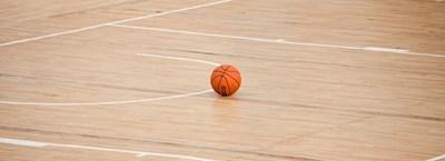 Анулираха баскетболния сезон в Италия СНИМКА: Pixabay
