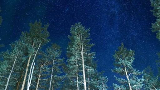 Пилоти наблюдават ярко светещ НЛО над Ирландия